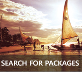 Search for Packages in Rio
