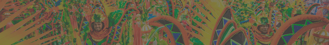 Fantasias Carnaval do Rio 2021